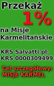1% pion